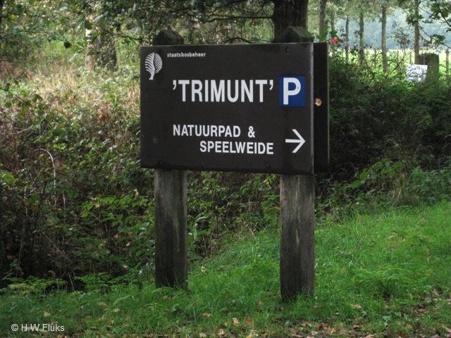 Bos van Trimunt